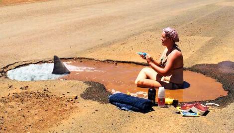 Pothole-shark