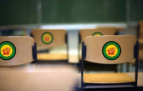 Specially branded ANCYL chairs, can also be brandished as a weapon.